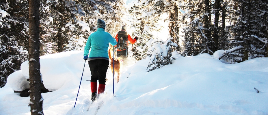2017 Winter Activity Guide
