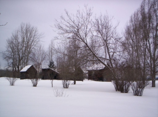 Johnston Farm - Western View