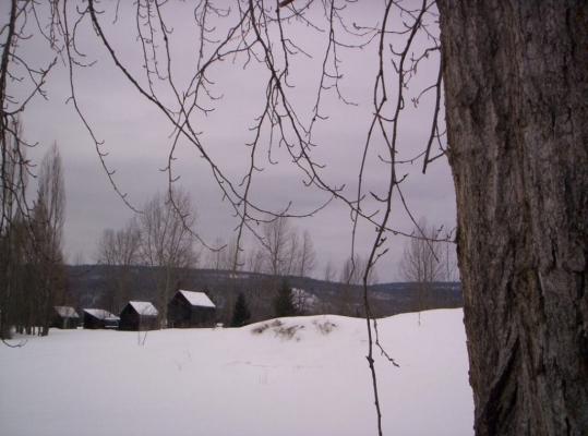 Johnston Farm - Southwest View