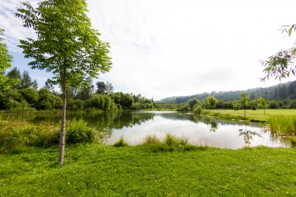 West Fraser Timber Park